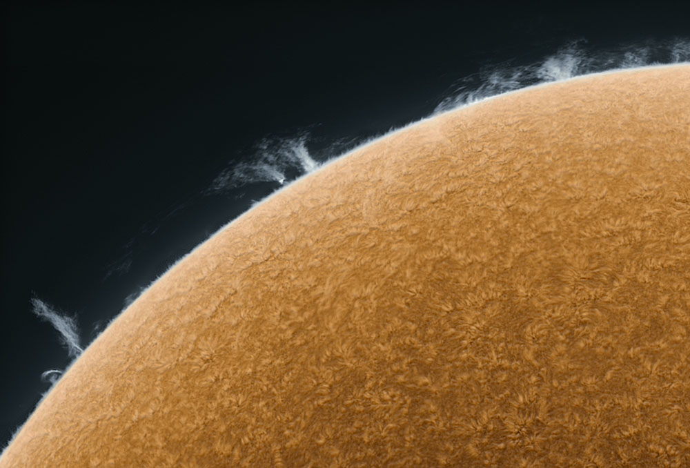 sun_photo_closeup_1_friedman