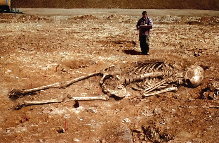 archeological-find-big-human-2